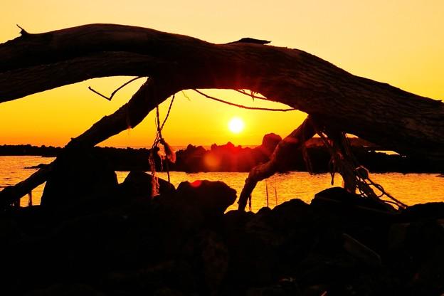 流木と夕陽・・・能登