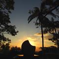 Photos: 部分日食みたいですよね~^^