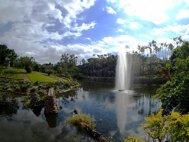 沖縄、東南植物楽園なのです^^