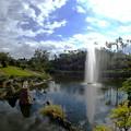 Photos: 沖縄、東南植物楽園なのです^^