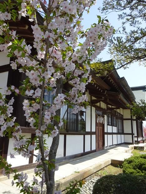 鹽竈神社にて
