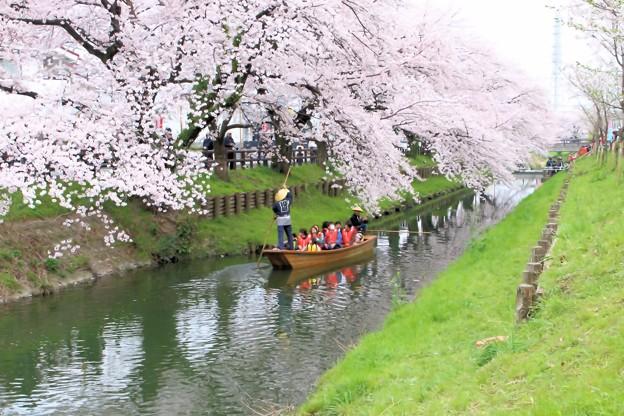 春の舟遊-1