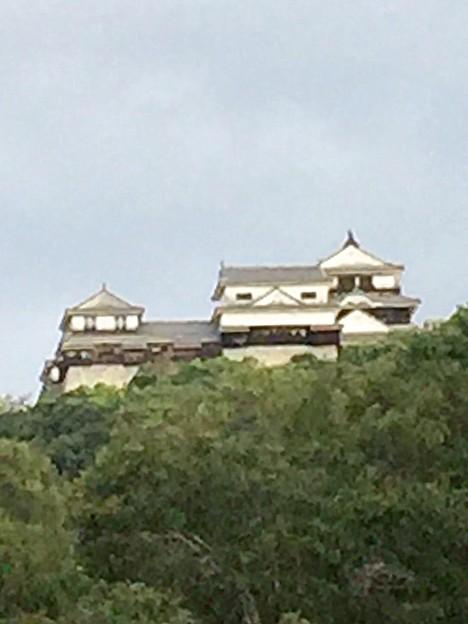 今朝の松山城