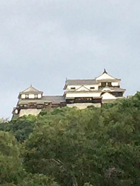 Photos: 今朝の松山城