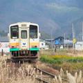 写真: PC050046