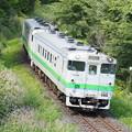 Photos: 普通列車 野花南駅~富良野駅