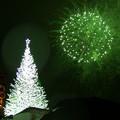 Photos: 2015 函館クリスマスファンタジー点灯式23