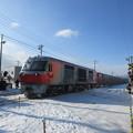 函館方面貨物列車 1