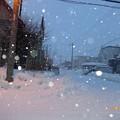 写真: 朝の雪