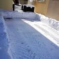 写真: 排雪後