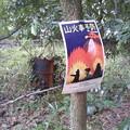 写真: 山火事予防て、横で火炊いてるやんww