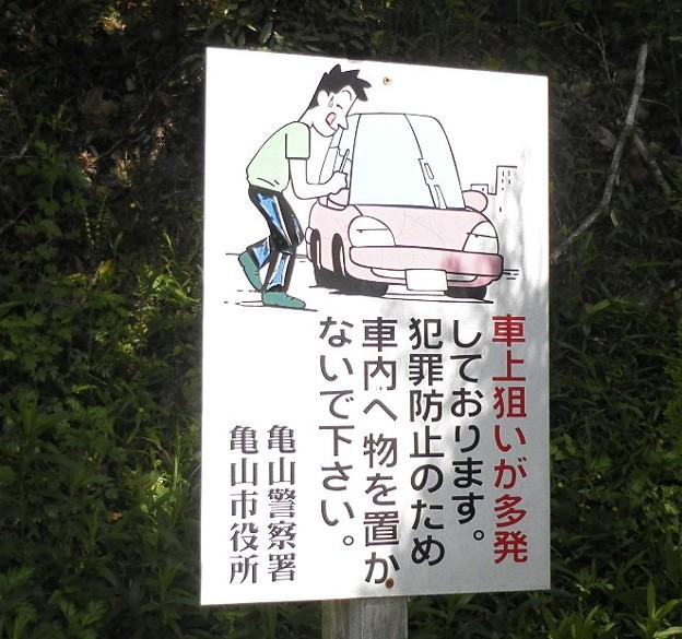 写真: 路傍の泥棒