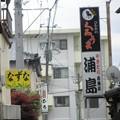 Photos: 名曲クイズ~浦島
