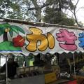 Photos: 名曲クイズ~南の島
