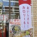 Photos: 解説~美食への戒め