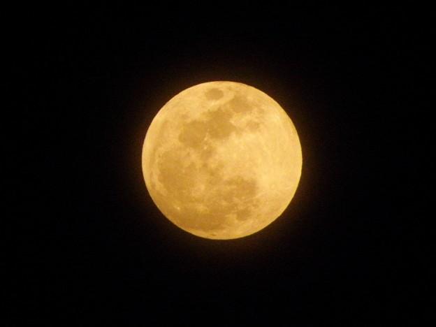 0131満月