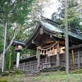 Photos: 諏訪大社3