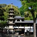 Photos: 五月晴れの宝塔寺
