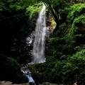 写真: 払沢の滝