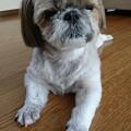 Photos: 笑って~