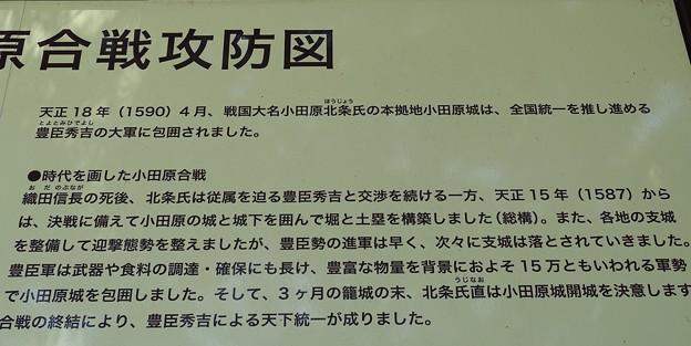 小田原合戦