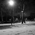 雪・公園・夜(モノクロ)