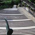 Photos: 3-石の河並み