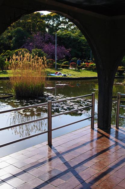 Photos: 午睡の公園
