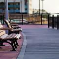 写真: 海風のベンチ