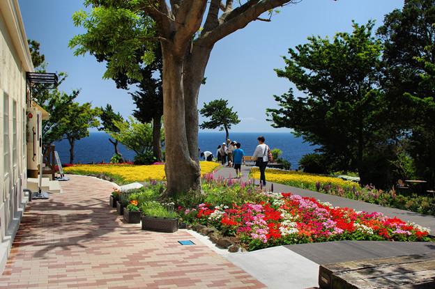 城ケ崎・花の館1