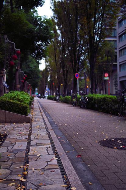 写真: 秋の音響