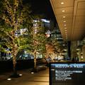 写真: 街撮りの夜