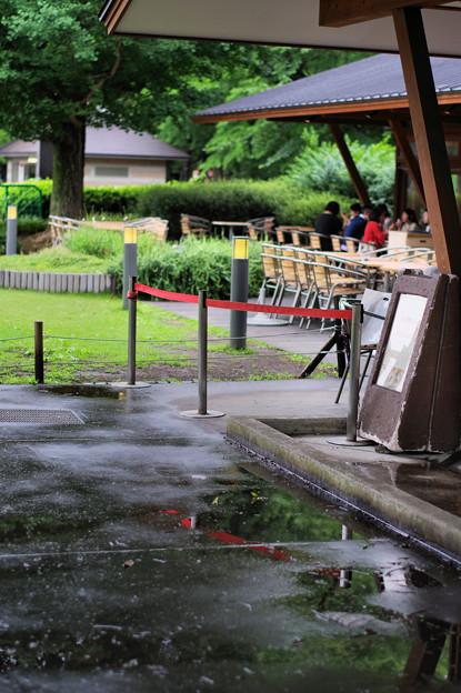 Park Side Cafe