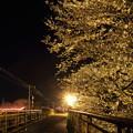 夜桜・・高校グランド横左は花見のちょうちん