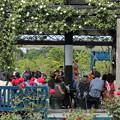 Photos: エコパークばら園演奏やってます