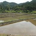 写真: もうすぐ田植え・・深川