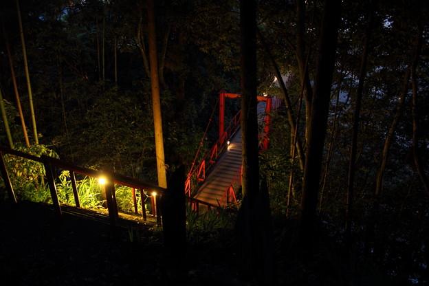 ほたる橋・・湯の鶴温泉
