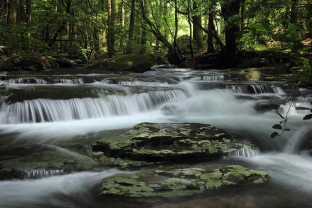 写真: 水量が最高に多い