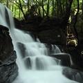 写真: 箱滝横から・・水量がすごいです