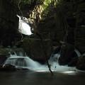 写真: 箱滝のすぐ下流