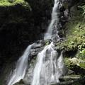 Photos: 大滝・・水量が少なくなっているのは残念
