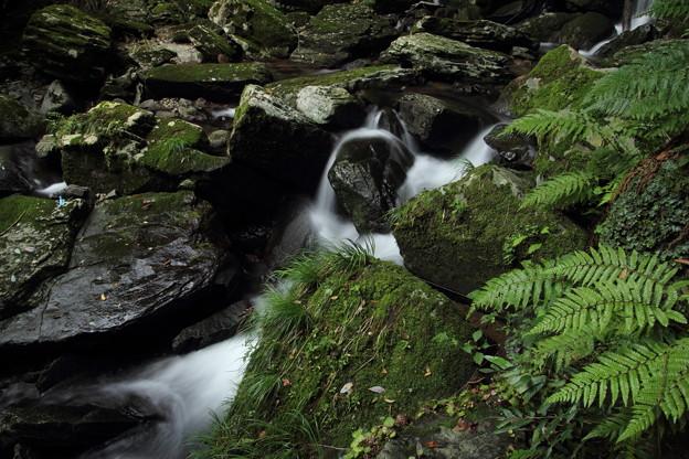 大滝の下流・・苔ですべるんです