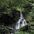 写真: 大滝を下の方から