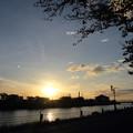 写真: 水俣川対岸の夕日