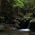 写真: 箱滝下流