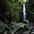 写真: 小滝・・楽に近くまで行ける