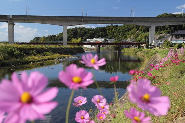 高架橋秋の風景