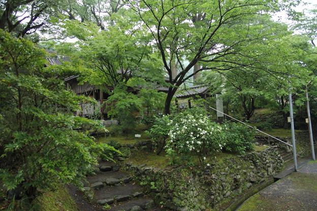雨の諏訪神社
