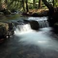 Photos: 箱滝上流の渓流