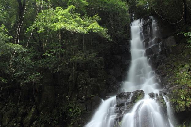 Photos: 大滝・・上部を見てみる